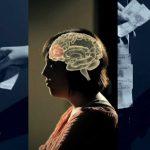 Redes 113 Sabemos que no sabemos lo que decidimos - psicobiología