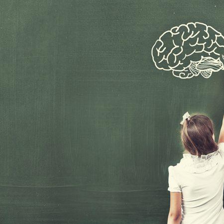 El aprendizaje del humano