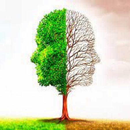 Terapia Gestalt definición, objetivos y cómo funciona1
